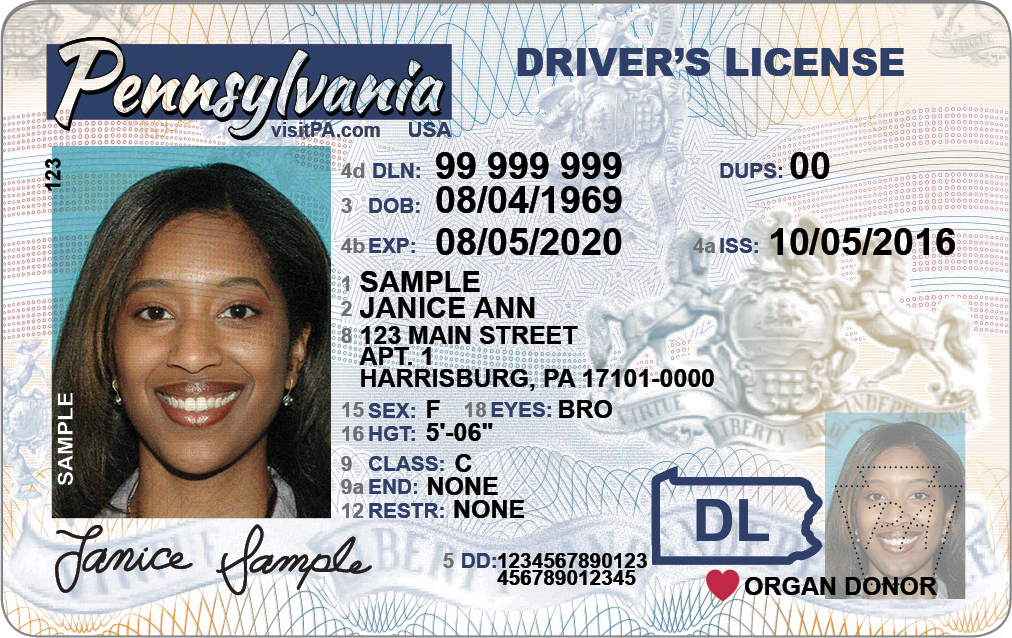 Sample driver's license representing drivers licensing services of driver's license services company Messenger Service Inc in Mckeesport, PA